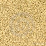 areia-13