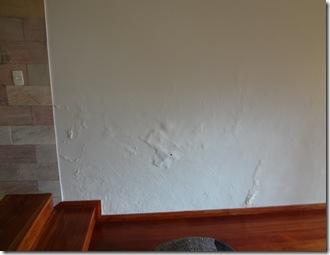 Revestimento para parede com infiltração