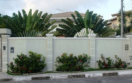Muro bonito barato 12 for Que planta para muro exterior vegetal