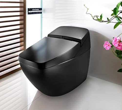 Black Toto Toilet
